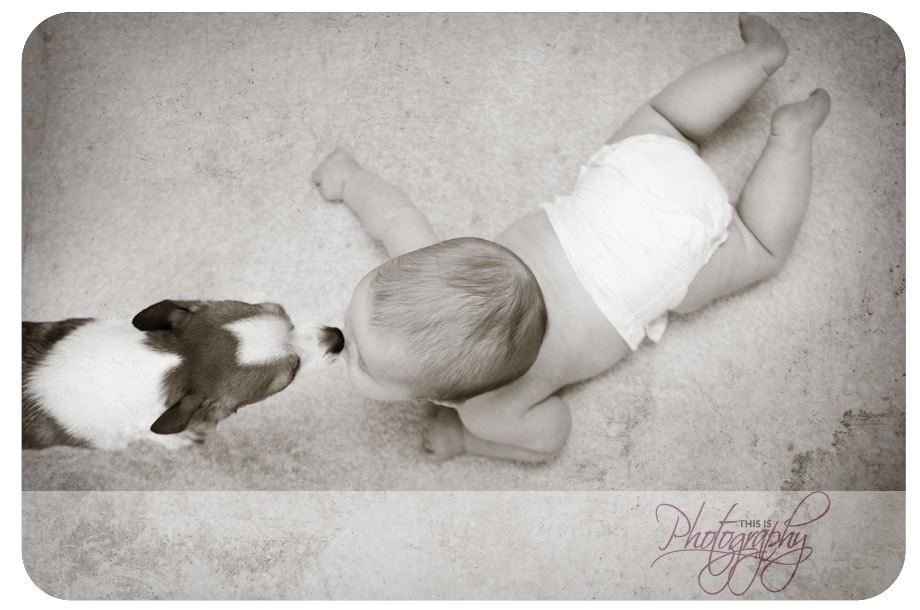 baby|photography